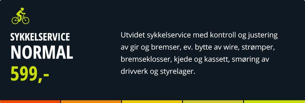 xxl-sykkel-normal_021.jpg
