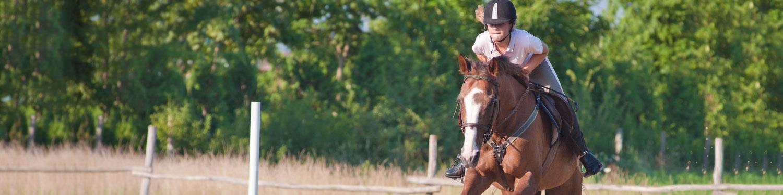 Hest & Ridning