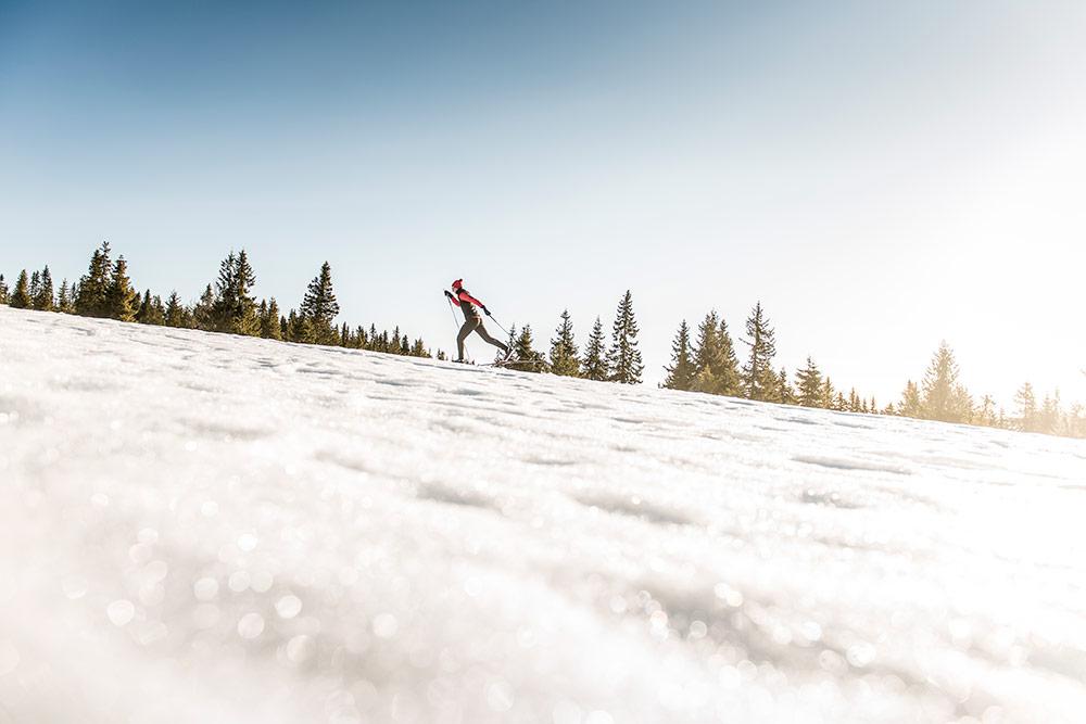 Skiservice.jpg