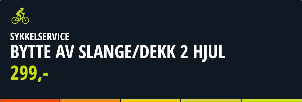 xxl-sykkel-Bytte-av-SlangeDekk-2-hjul_02.jpg