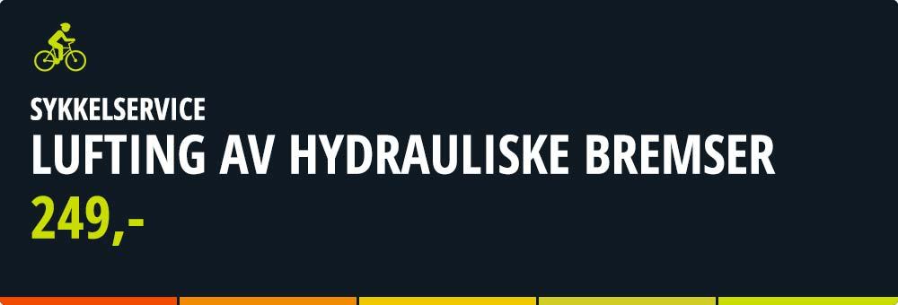 xxl-sykkel-Lufting-av-hydrauliske-bremser_02.jpg